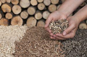 Hoe duurzaam is biomassa?